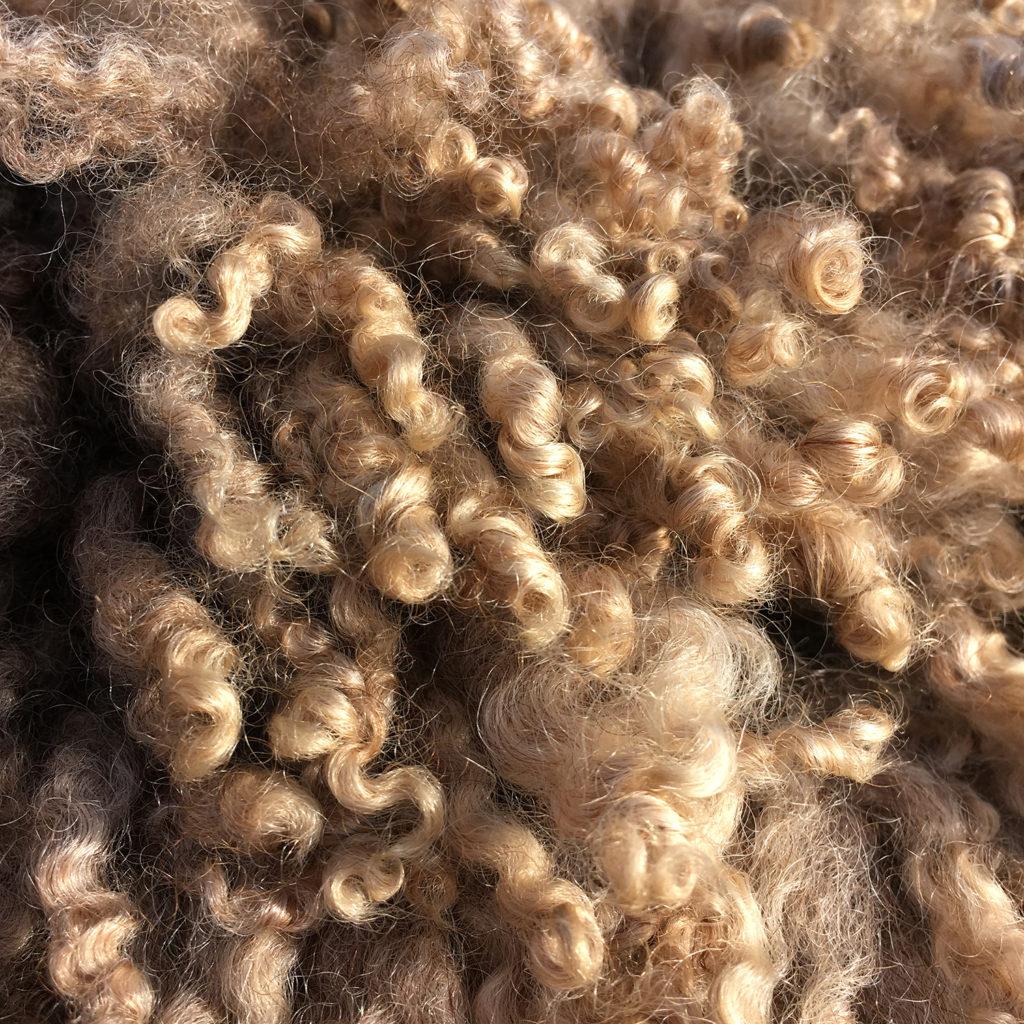 A natural color fleece