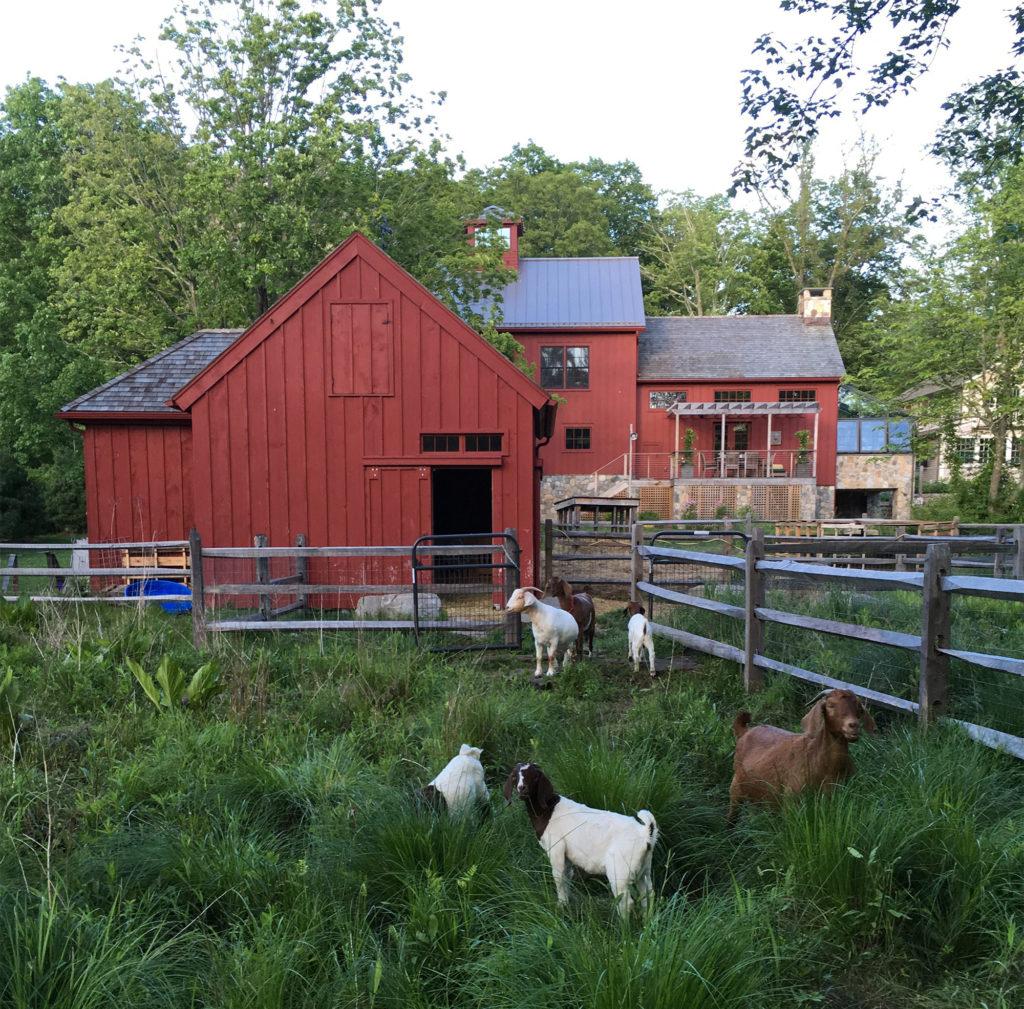 Henny Penny Farm, Ridgefield, CT
